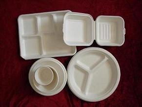 一次性环保可降解餐具甘蔗浆纸杯盘碟碗餐盒托盘蛋糕托