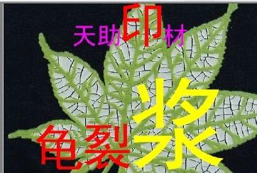 【厂家热卖】天助TZ-环保龟裂浆 裂纹浆 亮光龟裂白胶浆