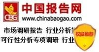 中国数码印刷消费市场监测与发展规划研究报告