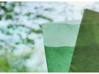 印度尼西亚一公司想用海藻来代替食品塑料包装