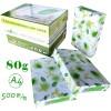 绿叶(GreenLeaf) 复印纸 A4 80g 500p 绿白包装 10包/箱