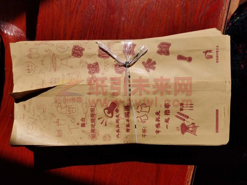 3-13 纸袋 2